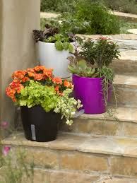 self watering waterease self watering planter gardeners com