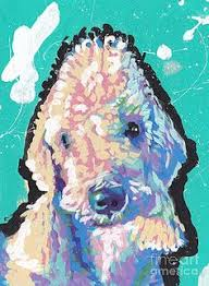 bedlington terrier san antonio pin by oscar khatchikian on border terrier art work pinterest