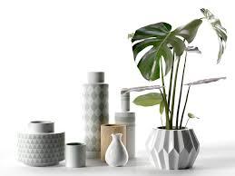 Plant Vase Vase 3d Models Download 3d Vase Files Cgtrader Com