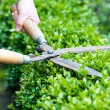 Valley Green Landscaping by The Green Edge Landscaping Landscaping Simi Valley Ca Phone