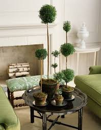 Topiaries Plants - 610 best topiary and espalier images on pinterest topiaries
