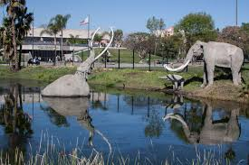city of brea halloween event guide to the la brea tar pits and page museum