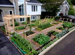 backyard oasis ideas on a budget home dignity