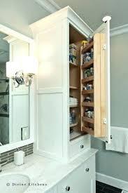 Linen Cabinet Doors Countertop Linen Cabinet Storage Cabinet Bathroom Master Bath