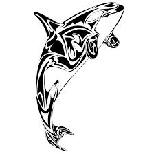 white belly killer whale tattoo design tatts pinterest