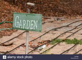 Mulching Vegetable Garden by Garden Sign And Burlap Bags Covering Vegetable Garden To Mulch