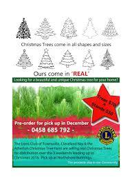 lions christmas tree fundraiser townsville jcu australia