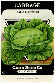 vintage seed packet garden clipart cabbage seed package