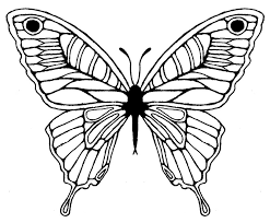 butterfly sketch design tattoomagz