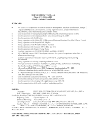 Resume Samples Good by Summary Resume Example Resume Cv Cover Letter Sample Professional