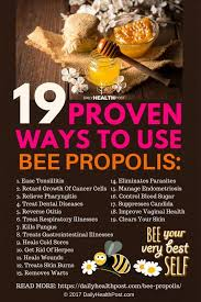 Raising Bees In Backyard by 175 Best Raising Bees Farm Animals Images On Pinterest Bee