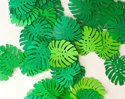 jungle theme decorations monstera leaf cupcake topper tropical party safari theme