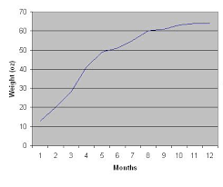 8 month old boxer dog weight puppy weight chart
