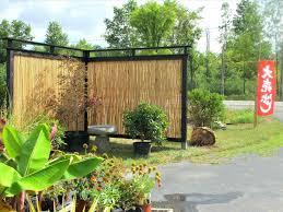 Backyard Privacy Ideas Cheap Dashing Outdoor Fence Then Dogs Backyard Repair Ideas En