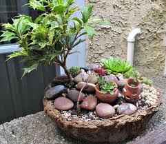 Mini Rock Garden Great Mini Rock Garden Ideas Photos Garden And Landscape Ideas