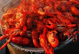 crawfish catering houston crawfish catering houston crawdad s crawfish boil catering packages