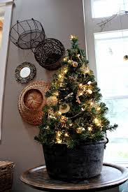 small tabletop trees modern home interiors ideas to