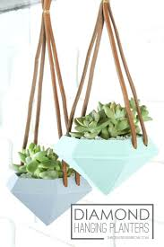 wall hanging planters best 25 hanging wall planters ideas on pinterest wall herb