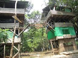 backyard jungle gym plans awesome design home design