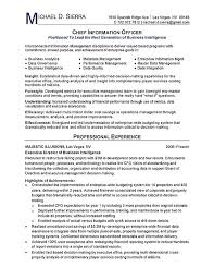 Sample Format Of A Resume by Chief Information Officer Cio Resume Example Resume Examples