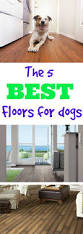 What To Clean Laminate Floor With What U0027s The Best Flooring For Dogs Flooringinc Blog