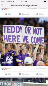 437 best mn vikings images on pinterest minnesota vikings