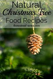 how to make your own christmas tree preservative safe u0026 non toxic