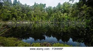 Park West Landscape by Mirror Tarn Oparara Basin Kahurangi National Park West Coast