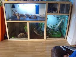 best 25 reptile tanks ideas on pinterest tortoise vivarium