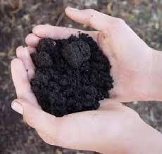 preparing soil for herb garden planting howstuffworks