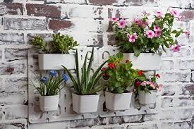 vertibloom living wall garden starter kit modular indoor
