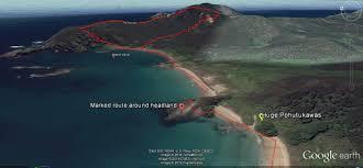 fig tree loop maitai bay a10 nz frenzy island new zealand
