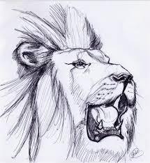 lion roaring sketch by noahstormcrow on deviantart