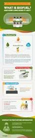 what is bioethanol fuel imaginfires imaginfires