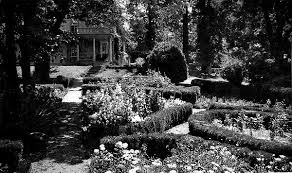 the american flower garden chapter 3