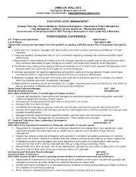 General Manager Resume Example Collections Resume Examples Resume For Your Job Application
