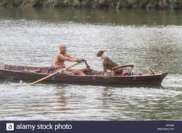 thames river boats dogs london uk 1st aug 2017 uk weather a dog coxes a rowing boat on