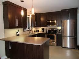 couleur d armoire de cuisine specialitésmm armoire de cuisine en thermoplastique