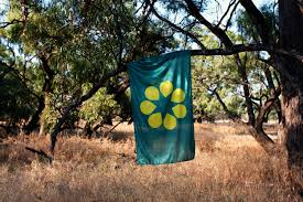 Why Is The Australian Flag Important The Golden Wattle Flag