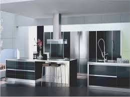 kitchen awesome modern kitchen cabinets los angeles best home
