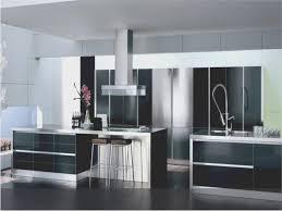 new modern kitchen cabinets kitchen awesome modern kitchen cabinets los angeles best home