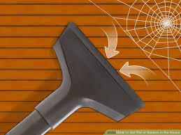Are Spiders Attracted To Light How To Get Rid Of Spiders In The House 11 Steps With Pictures