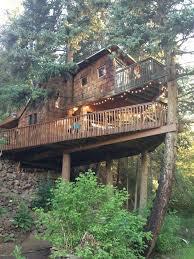 famous tree houses rocky mountain treehouse destination vacation pinterest
