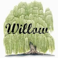 ren s baby name name of the week willow