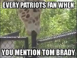 Meme Giraffe - nfl memes