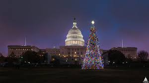christmas tree lighting 2018 2017 capitol christmas tree lighting ceremony announced architect