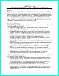 Catering Resume Samples by Best 25 Sales Job Description Ideas Only On Pinterest