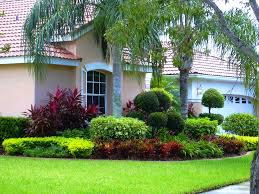 furniture delightful images about front yard landscaping florida