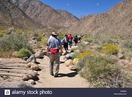 Where Is Anza Borrego by Hikers On The Borrego Palm Canyon Trail In Anza Borrego Desert