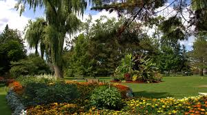 Botanical Garden Definition by Toronto Tag Wallpapers Gardens Ontario Trees Nature Shrubs